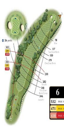 Hole 6 Map